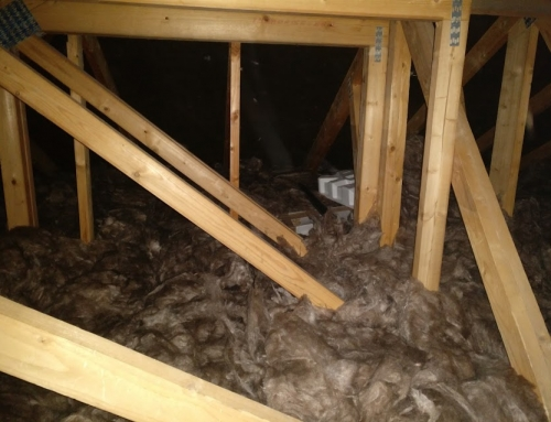 Attic Insulation Bray